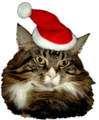 weihnachtsmutze-k.jpg
